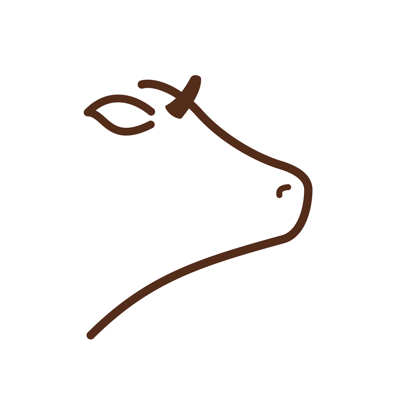 Rostit de tira de vedella ecològica Roia - La Botiga Del Pallars